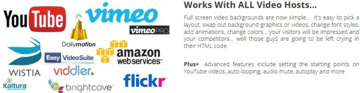 Landing page monkey video features