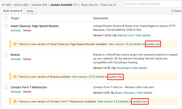 the importance of WordPress updates