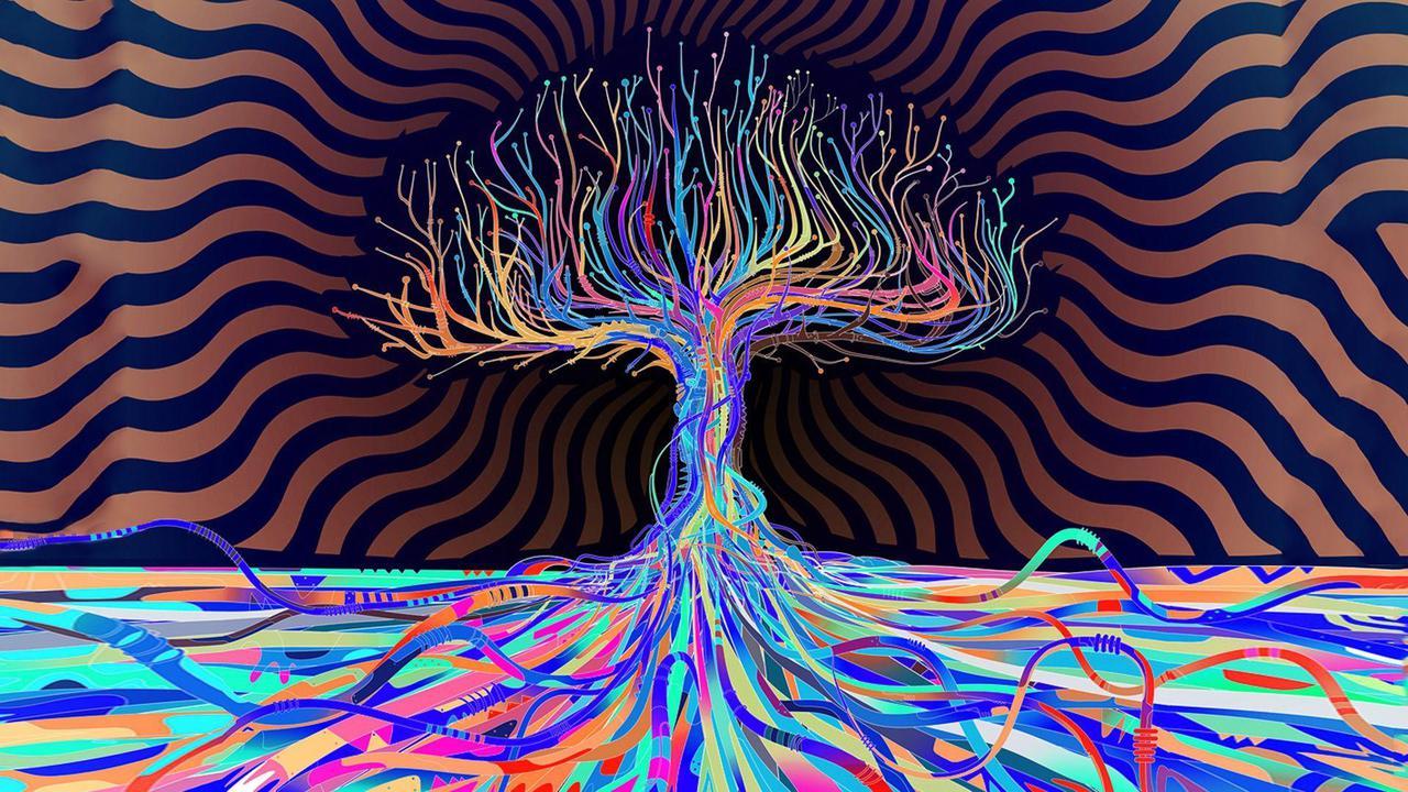 Trippy Mushroom
